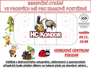Pozvánka na benefiční hokejový zápas